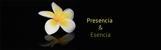 guillemrecolons.com Personal Branding