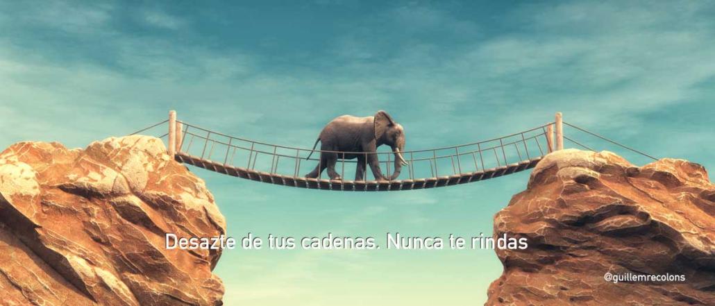 Nunca Te Rindas Churchill Y La Cuerda Del Elefante